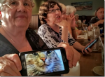 Google Photos finds Lost Cat!